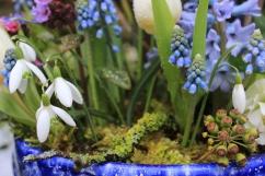 Spring bowl detail